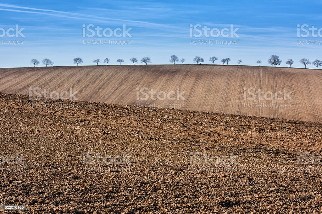 Prepared arable agricultural land, landscape with blue sky stock photo