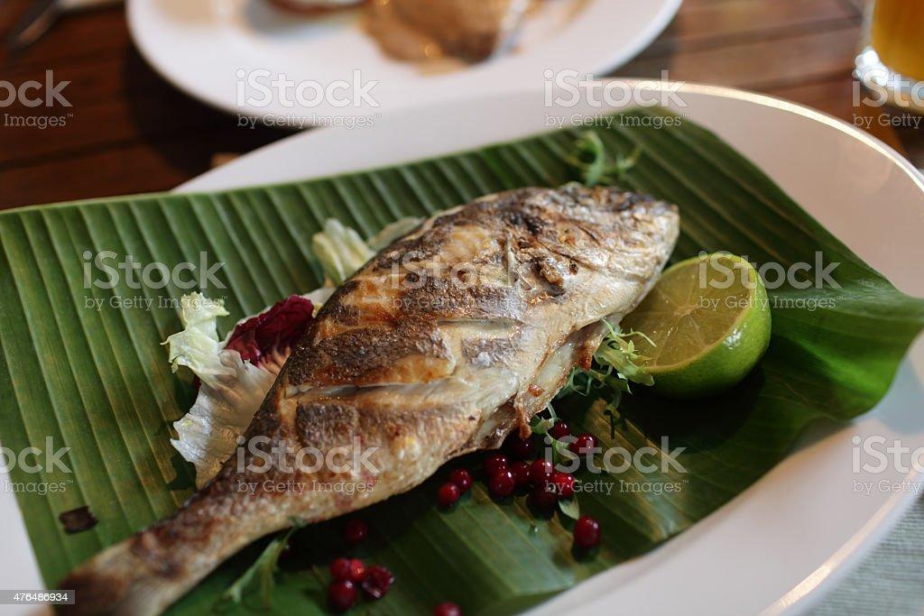Prepared dorado fish stock photo
