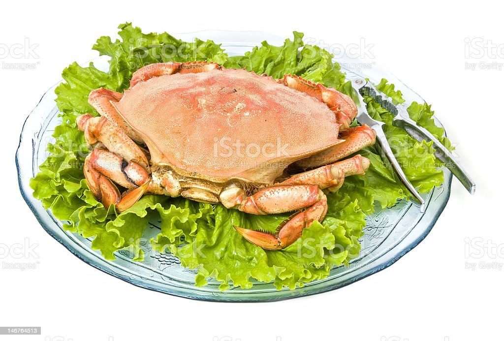 Prepared Dungeness Crab stock photo