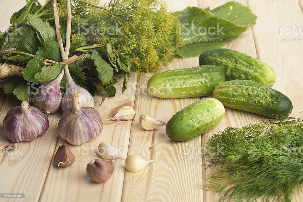 preparing cucumbers for pickling royalty-free stock photo