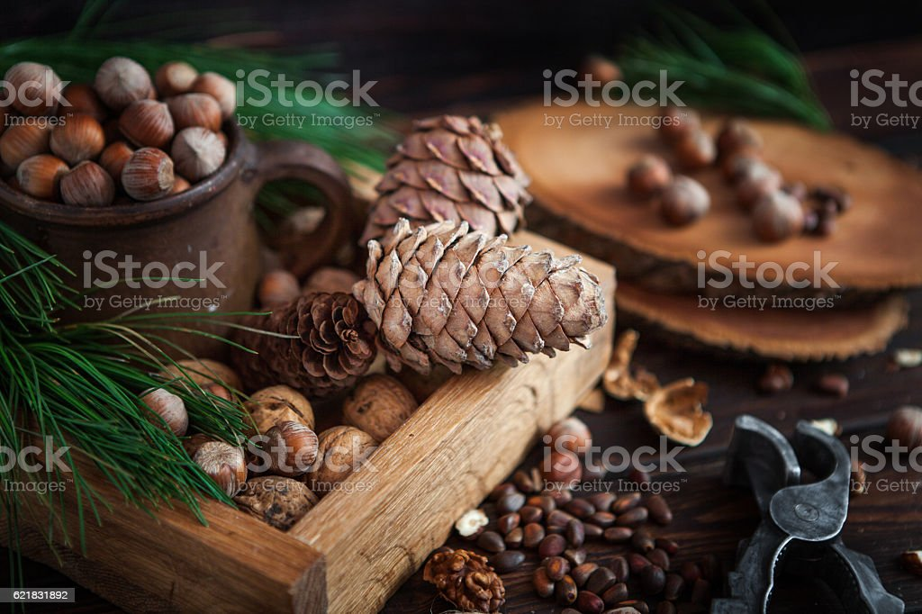 Preparing for Christmas stock photo