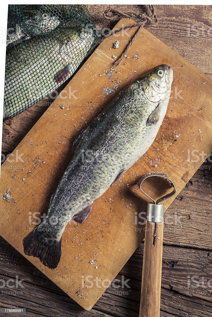 Preparing freshly caught fish royalty-free stock photo