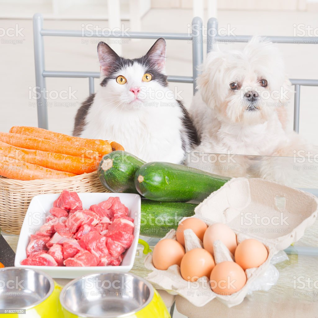 Preparing natural food for pets stock photo