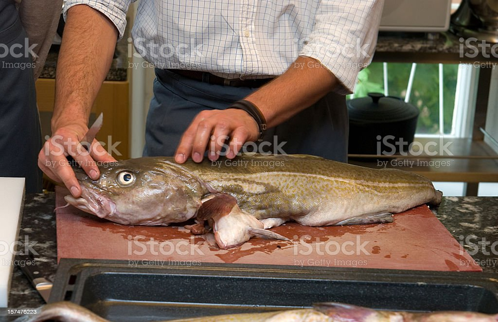 preparing sad fish - funny picture royalty-free stock photo