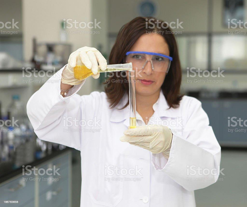 preparing samples for testing royalty-free stock photo