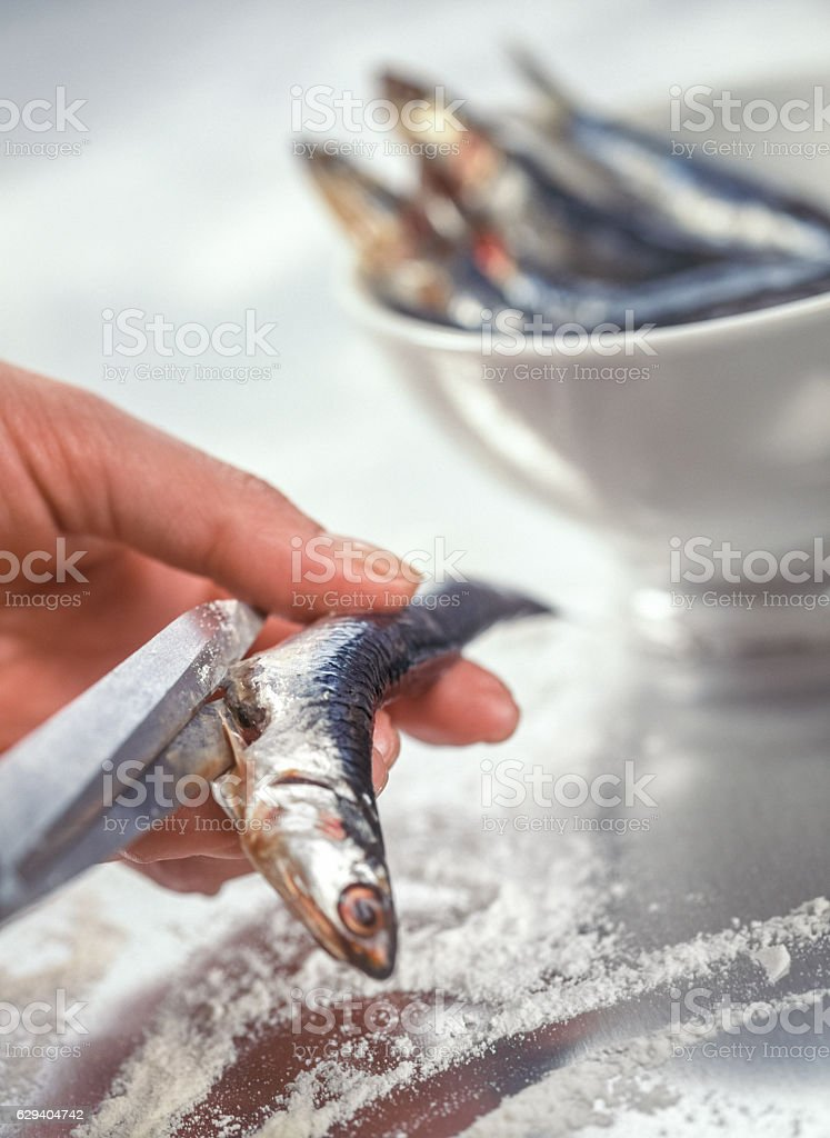 Preparing sardines for cooking stock photo