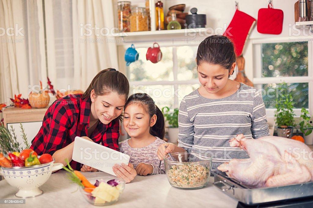 Preparing Turkey for Holiday Dinner stock photo