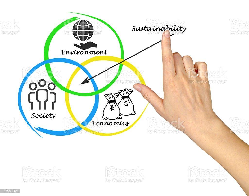 Presentation of diagram of sustainability stock photo