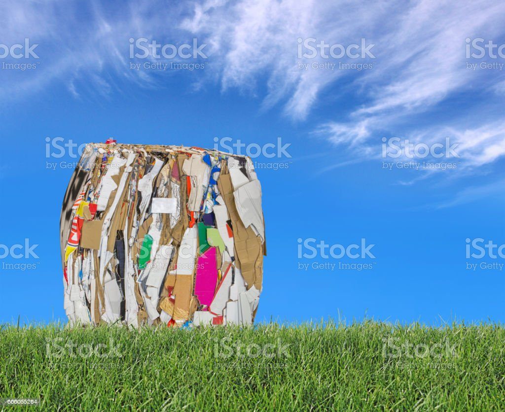 Pressed boxes made of paperboard on the meadow stock photo