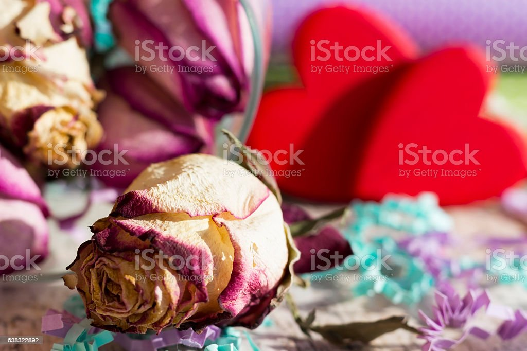 Pressed rosebud on the background of two red hearts stock photo