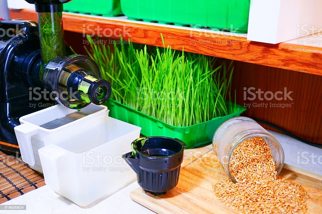 Pressed wheatgrass juice stock photo