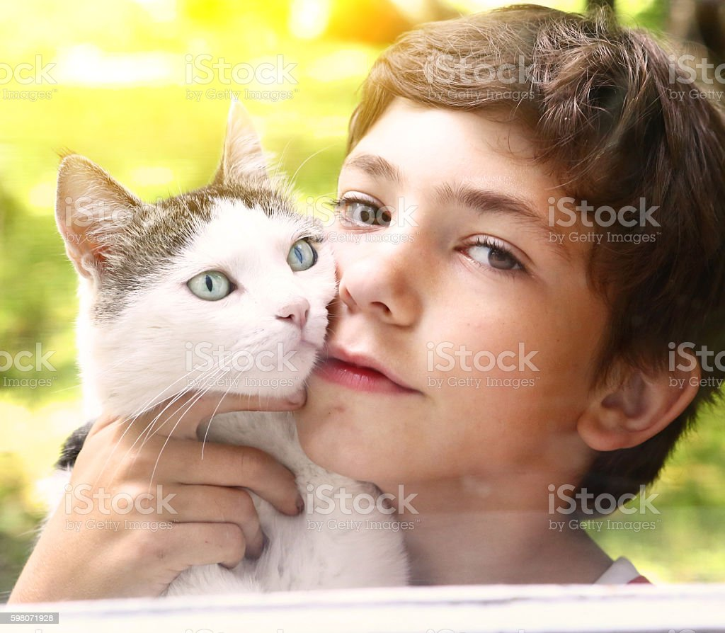 preteen handsome boy with tom cat stock photo