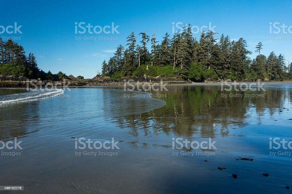 Pretty beach at low tide on Vancouver Island stock photo