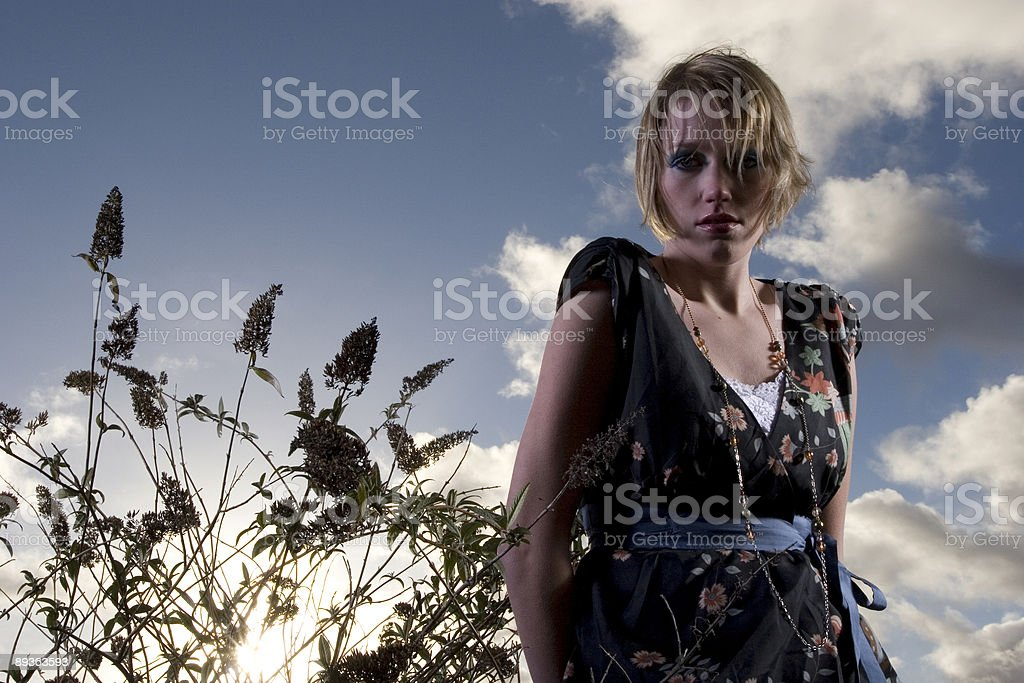 Pretty Blond Series royalty-free stock photo