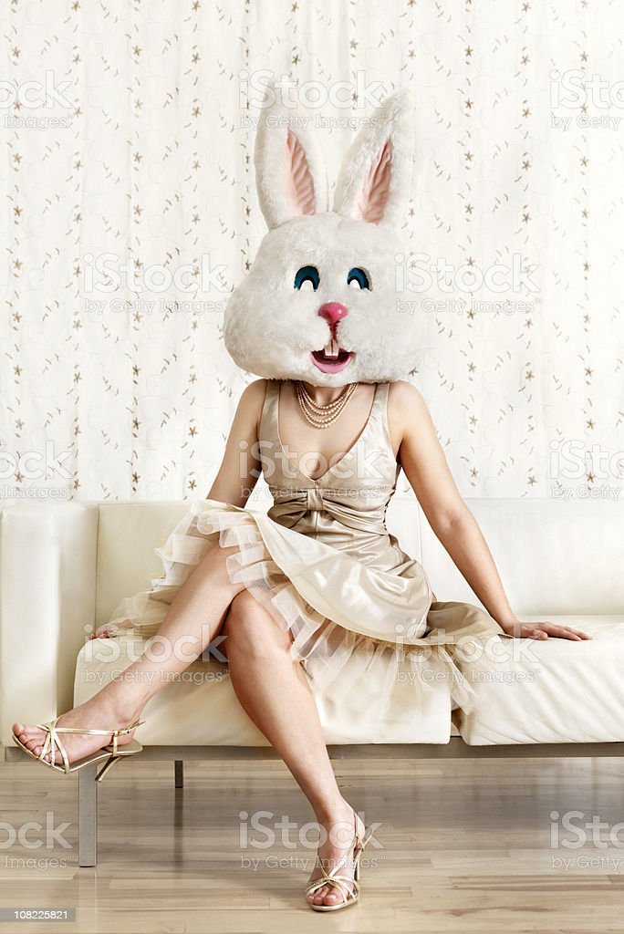 Pretty bunny stock photo