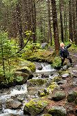 Pretty creek on West Mendenhall Trail