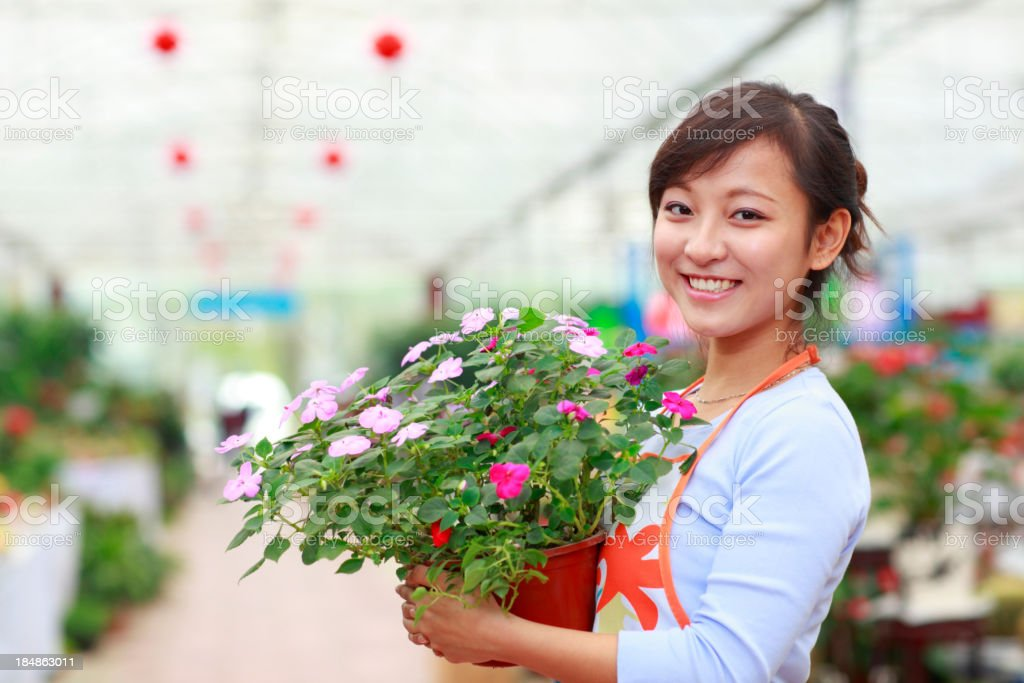 pretty florist in her shop stock photo