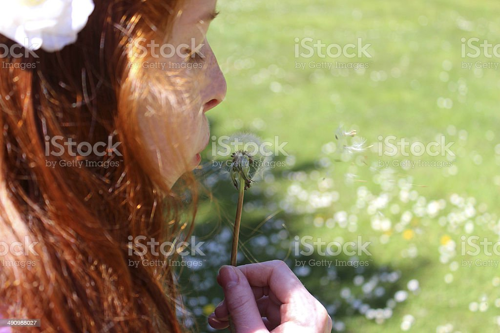 Pretty girl blowing seeds from a ripe dandelion in garden stock photo