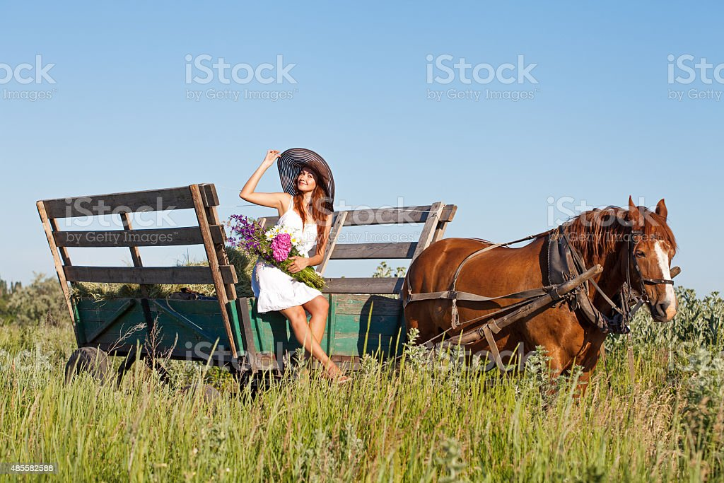 Pretty girl with wildflowers on the horse carriage in summer stock photo