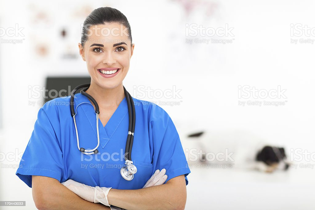 pretty veterinarian stock photo