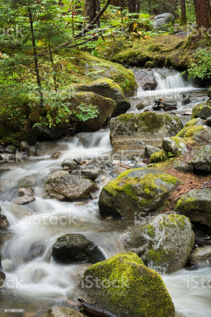 Pretty waterfall in Tongass National Forest stock photo