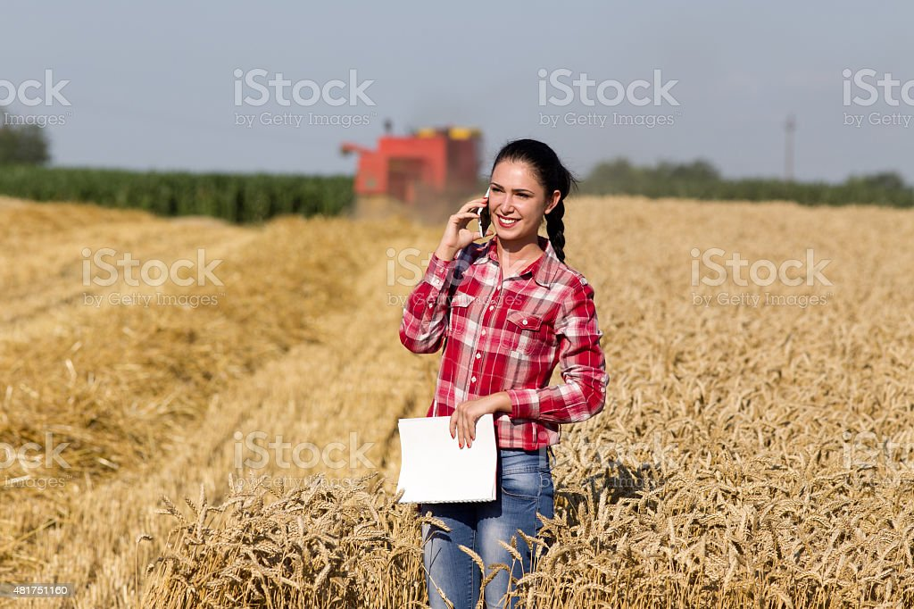 Pretty woman talking on mobile phone in wheat field stock photo