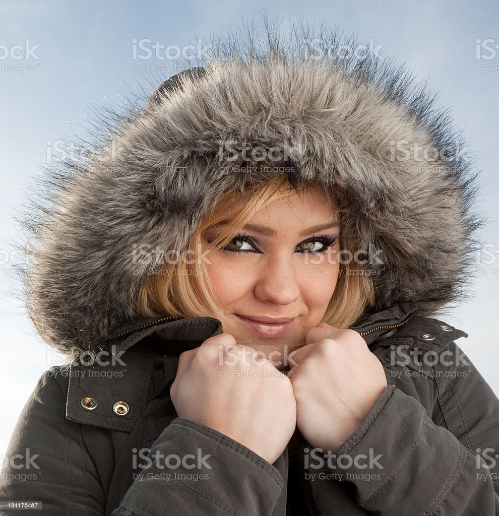 Pretty young woman in the winter royalty-free stock photo