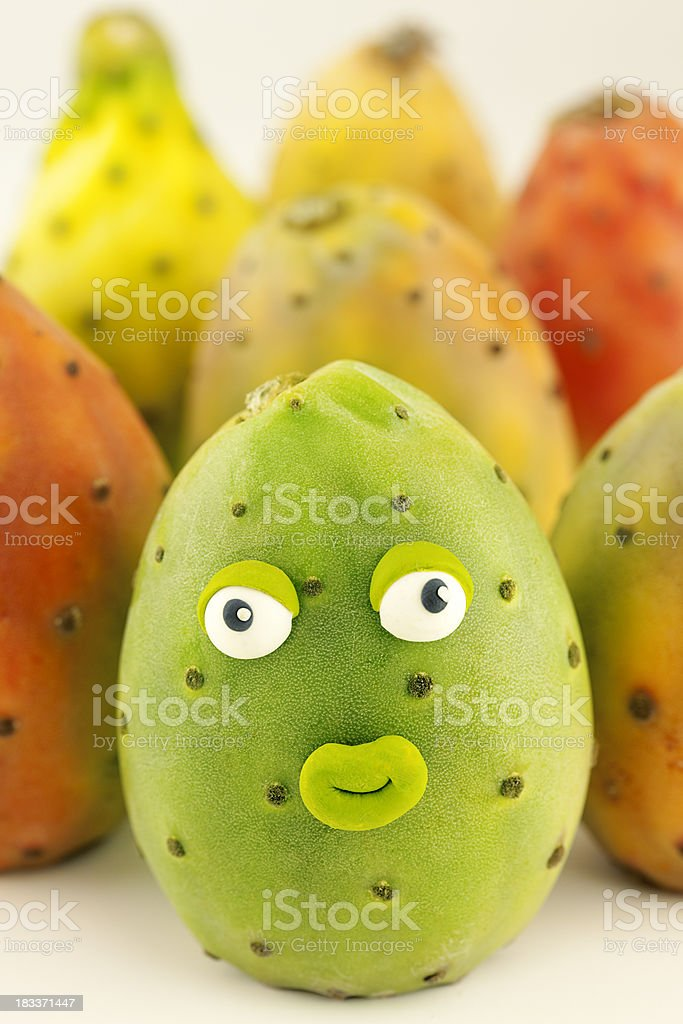 Prickly pear cactus portrait royalty-free stock photo