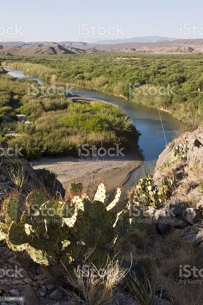 Prickly Pear Overlooking Rio Grande River,  Big Bend National Park. stock photo