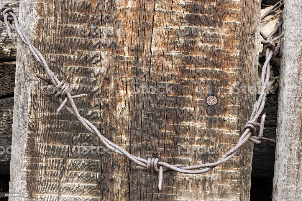 Prickly wire. royalty-free stock photo