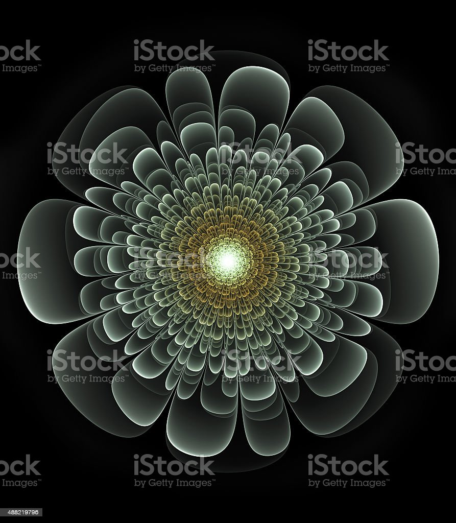 primitive fractal flower illustration over black background stock photo