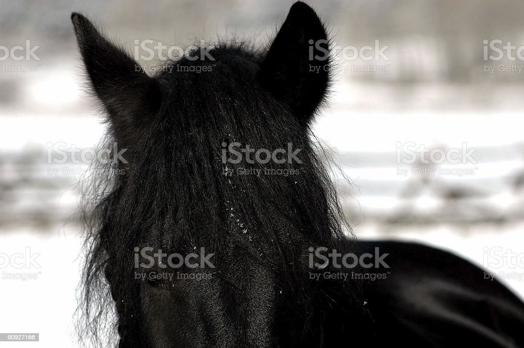 prince of darkness royalty-free stock photo