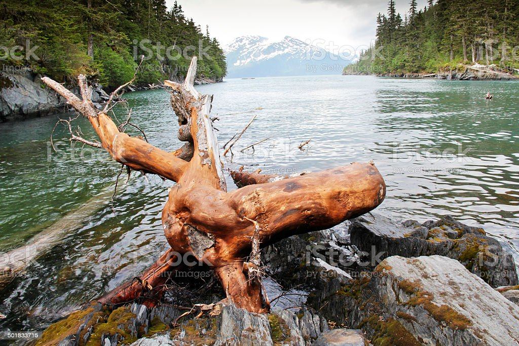 Prince William Sound Whittier Alaska stock photo