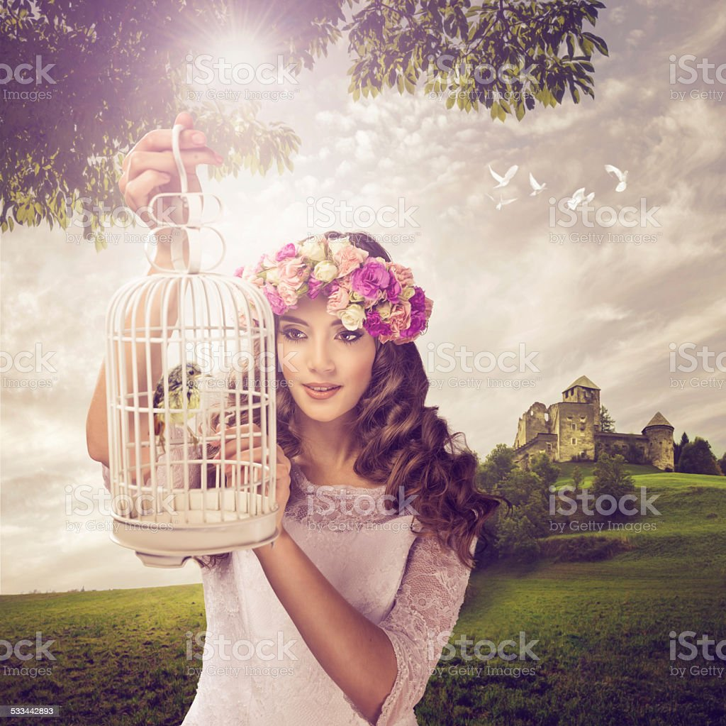 Princess and the bird - a fabulous landscape stock photo