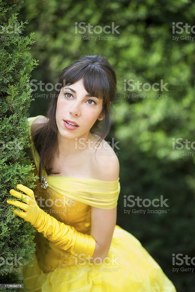 Princess royalty-free stock photo