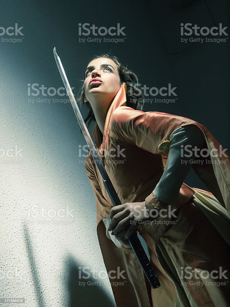 Princess Warrior stock photo