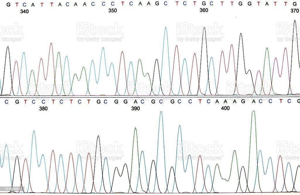 Printout of a DNA sequence chromatogram stock photo