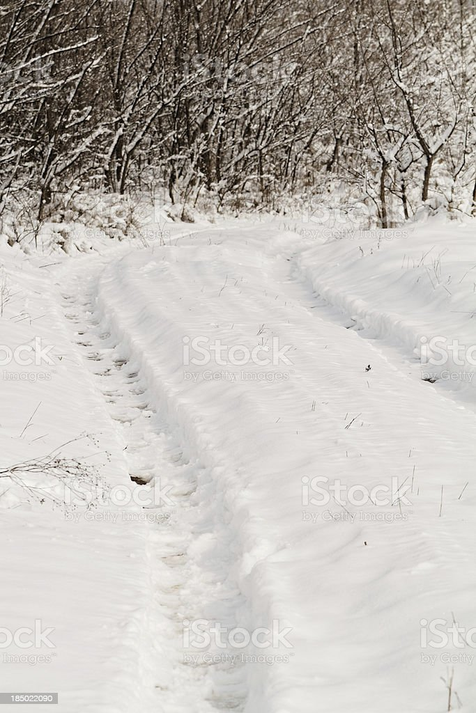 Prints of wheels on a snow royalty-free stock photo