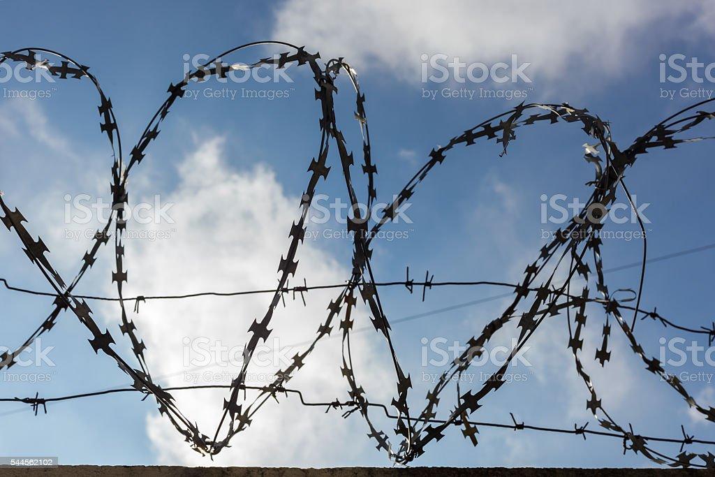 Prison barbed wire. stock photo