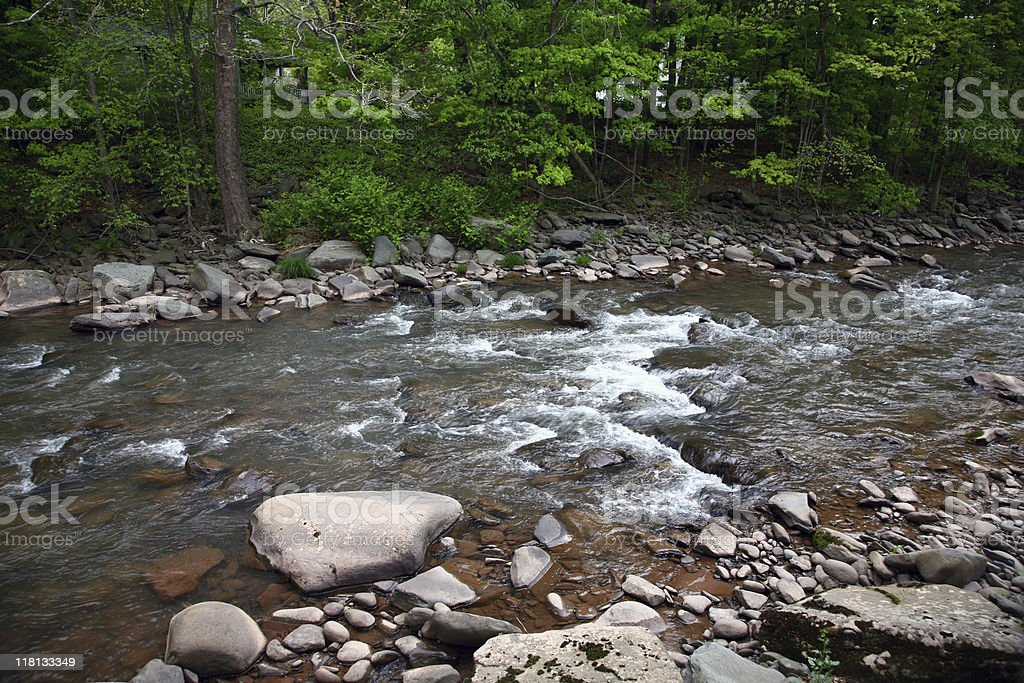 Pristine Catskill Mountain Stream stock photo