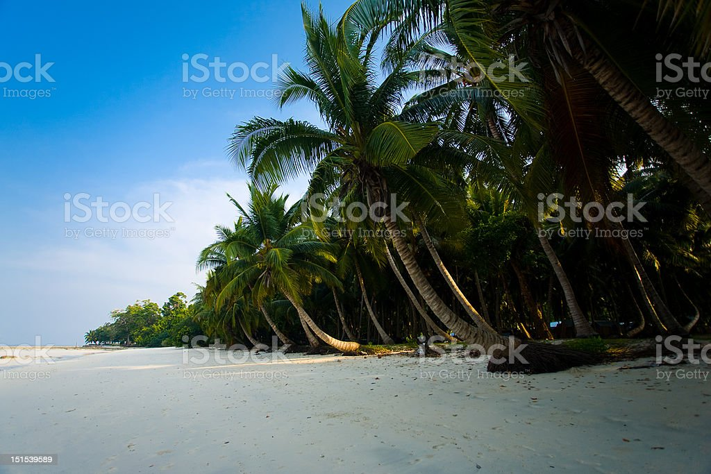 Pristine Empty Beach Havelock Island stock photo