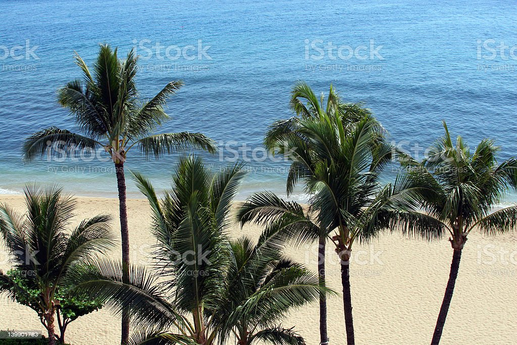 Pristine Maui Beach - Tropical Paradise royalty-free stock photo
