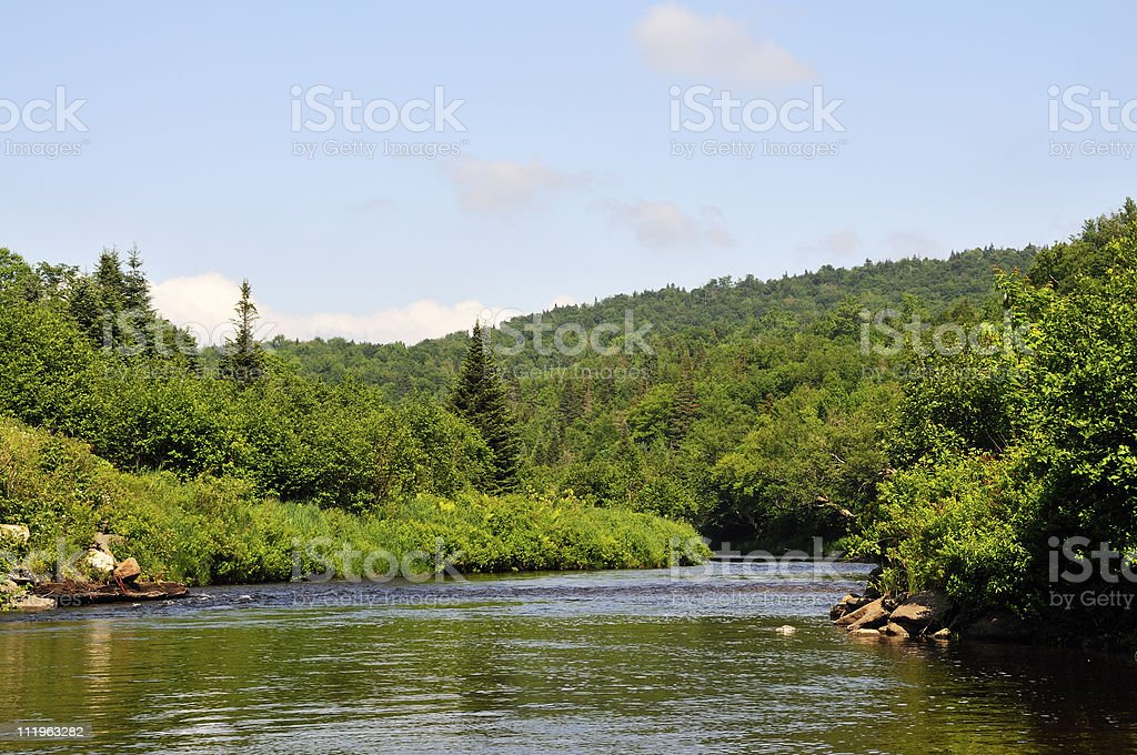 Pristine North Country Trout River royalty-free stock photo