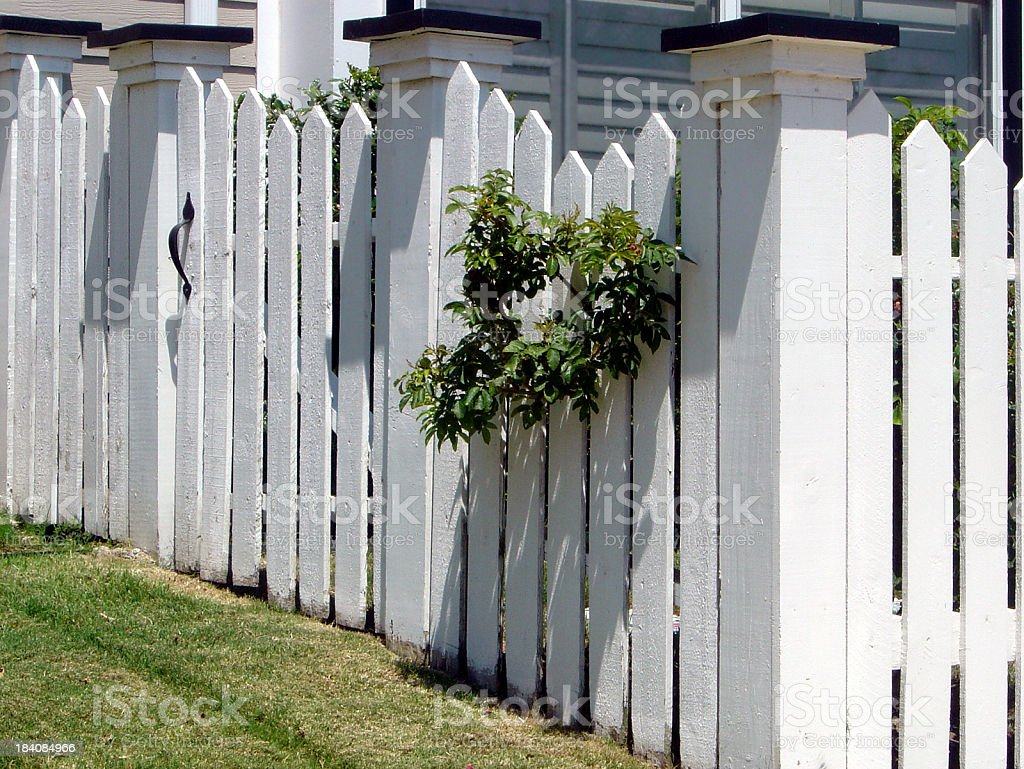 Pristine Small Picket Fence With Gate Door And Greenery stock photo
