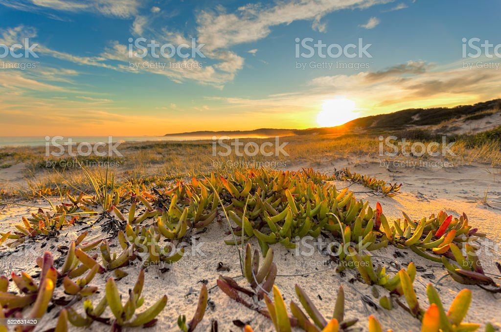 Pristine untouched Australian beach stock photo
