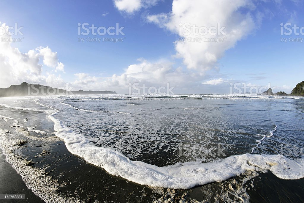 XL pristine wilderness beach stock photo