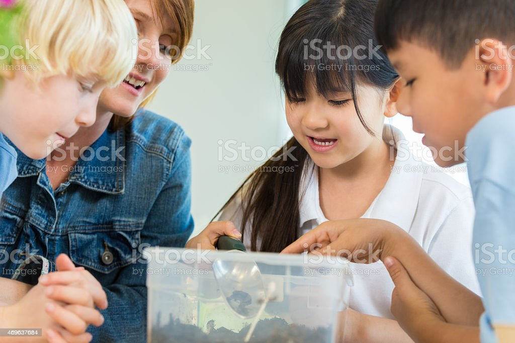 Private elementary school students doing science project in classroom stock photo