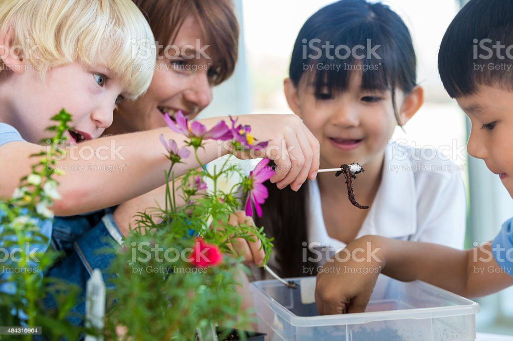 Private elementary school students studying earth science with teacher stock photo