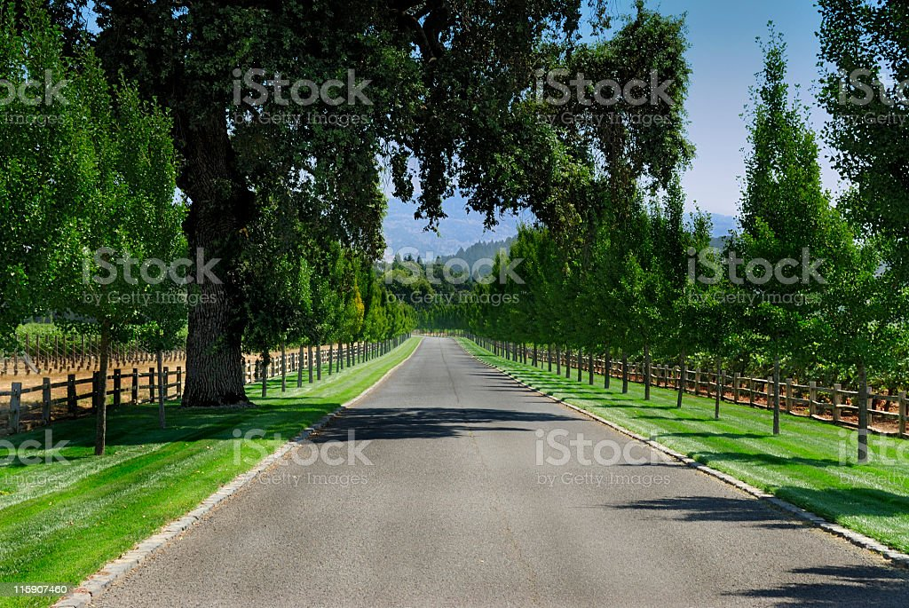 Private Road royalty-free stock photo