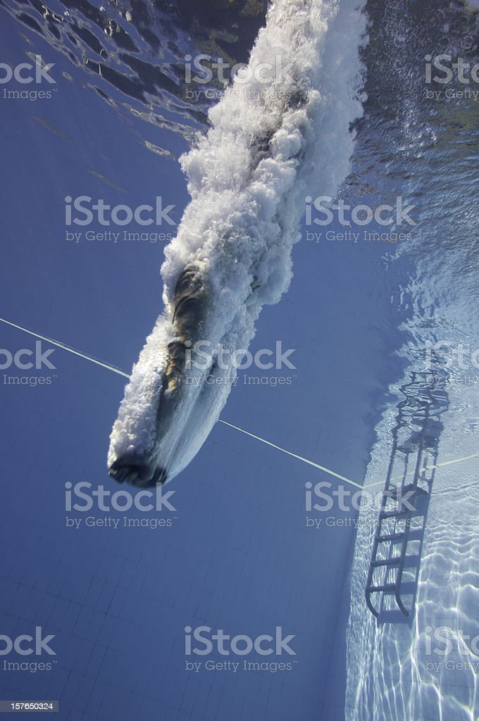 Pro diver from below stock photo